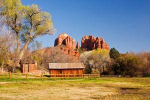 Mesa landscaping