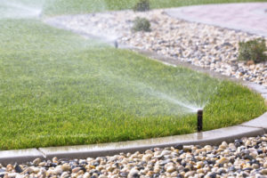 Water Conservation is Critical for Landscaping