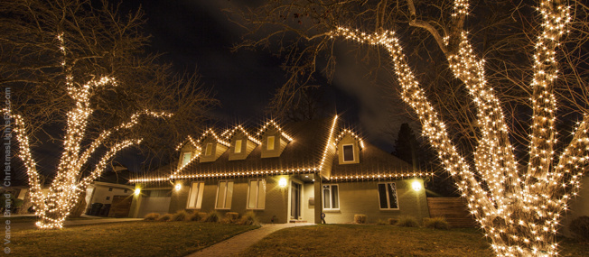 - How To Wrap Trees With Christmas Lights Corona Landscape